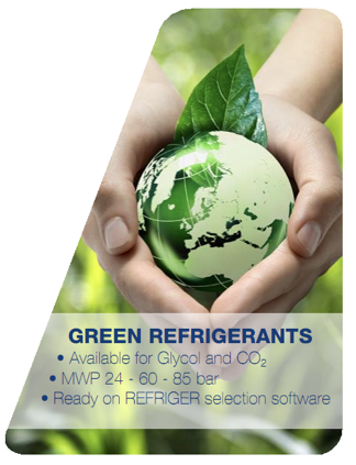 person holding gree world with green leaf